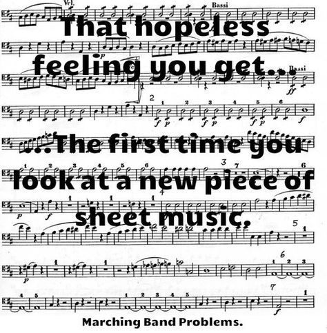 Just got the music for the marching band show and it looks pretty difficult!<-----I don't have marching band again until August Marching Band Problems, Marching Band Memes, Flute Problems, Orchestra Problems, Music Jokes, Music Humor, Funny Music, Band Nerd, Band Jokes