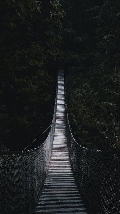 The Latest Iphone11 Iphone11 Pro Iphone 11 Pro Max Mobile Phone Hd Wallpapers Free Download Cable Bridge Bridge Forest Trees Dark Free Wallpaper Down Iphone Wallpaper Photography Wallpaper Free