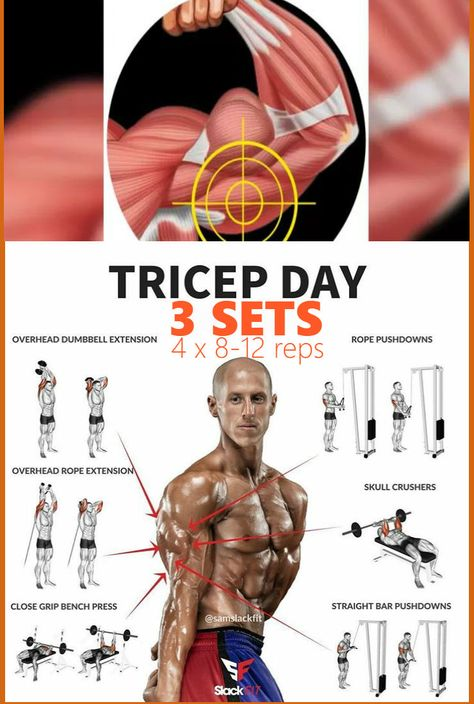 6 Exercises To Get Perfectly Shaped Triceps - GymGuider.com