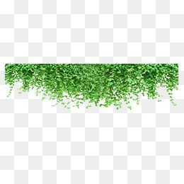 White Naava One Slim Green Wall From Ahead
