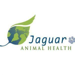 Jaguar Health Inc Nasdaq Jagx Stock Corrects Post A Blockbuster Rally Nasdaq Health National Institutes Of Health