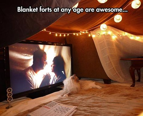 Spread The Blanket Fort Love
