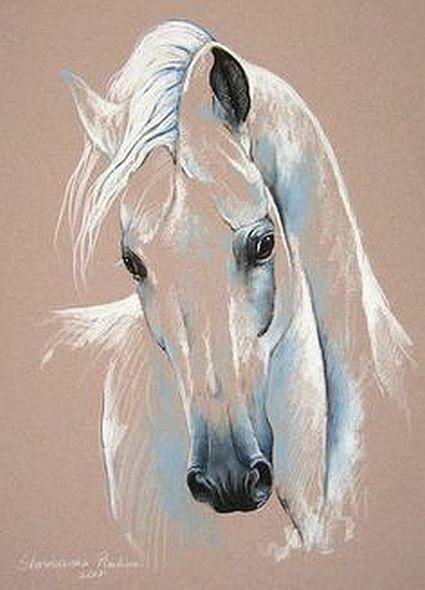 Lowin Grrrrr Tiere Malen Pferdebilder Pferde Malen