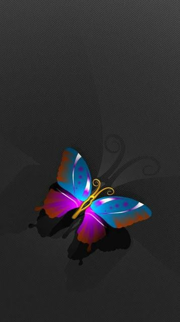 31 Whatsapp Dp Images Butterfly Free Download Hd Images In 2021 Blue Butterfly Wallpaper Butterfly Wallpaper Purple Wallpaper Iphone