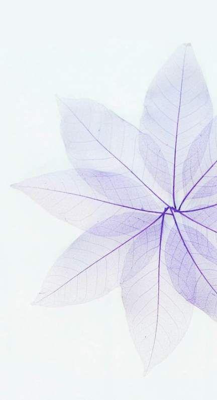 Flowers background tumblr watercolors 66 ideas #flowers