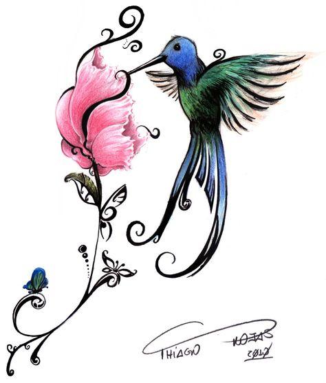 Um Lindo Beija Flor Beija Flor Desenho Desenhos Para Pintura