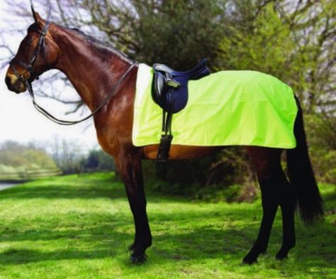 Rhinegold Horse Walker Lunge Rug