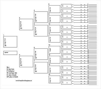 27 Simple Family Tree Templates Family Tree Template Word Free