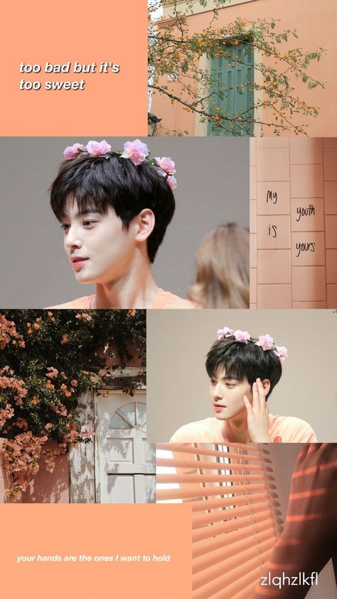 List Of Cha Eun Woo Wallpaper Images And Cha Eun Woo