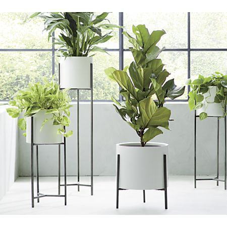 Dundee White Floor Planters Crate And Barrel White Planters Tall Indoor Plants Large Indoor Planters