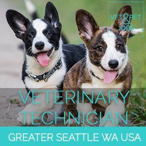 Veterinary Technician Small Animal Greater Seattle Washington
