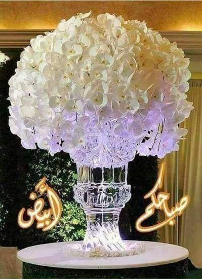 صور صباح الخير واجمل عبارات صباحية للأحبه والأصدقاء موقع مصري Good Morning Roses Good Morning Flowers Good Morning Arabic
