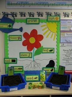 Plantas Con Imagenes Actividades De Ingles Para Ninos