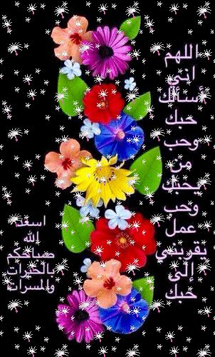 راضيه بقضاء الله Google Kertas Dinding Gambar Lucu Foto Lucu