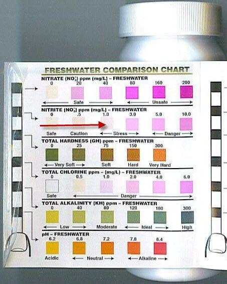 Tetra Easy Strips Color Chart : tetra, strips, color, chart, Tetra, Strips, Chart, Google, Search, Chart,, Tank,, Fresh, Water