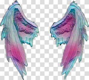Sticker Wing Desktop Angel Wings Transparent Background Png Clipart Clip Art Transparent Background Pink Smoke Bomb