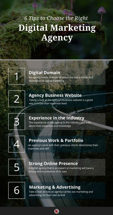 6 Tips to Choose the Right Digital Marketing Agency