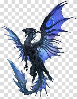 Gray And Blue Dragon Animated The Fairy With Turquoise Hair Dragon Fantasy Western Dragon Transparent Backg Shadow Dragon Eastern Dragon Dragon Illustration