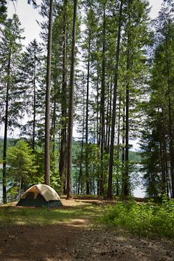 Check out Shasta Recreation's website for spring and fall camping specials.