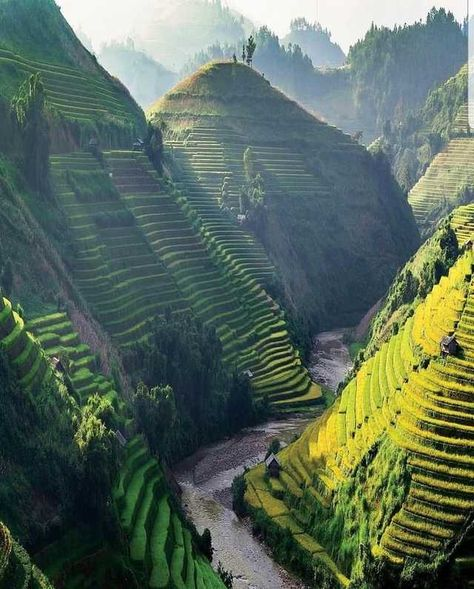 Mu Cang Chai District in the Northwest region of Vietnam has the greatest rice terraces imaginable 😍 🇻🇳 Photo via Explore.Cant help but wonder if Dr. Seuss ever visited Mu Cang Chai See terraced rice fields for yourself!Sapa is Listed as the Beautiful Places In The World, Beautiful Places To Visit, Places Around The World, Cool Places To Visit, Best Countries To Visit, Amazing Places On Earth, Travel Photographie, Vietnam Voyage, Vietnam Travel