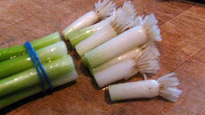 Cut the ends off green onions and plant in potting soil. Of course.