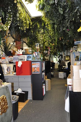 Tree inside the Zappos office