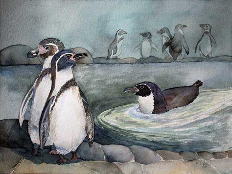 Vorbereitung für unsere Ausstellung im Rostocker Zoo   Humboldt Pinguine (c) Aquarell von Frank Koebsch