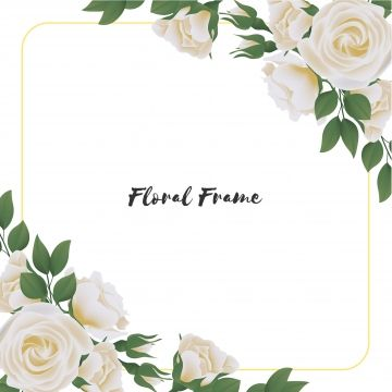 Beautiful Square Flower Frame With White Rose Bouquet Rectangle Bouquet Beautiful Png And Vector With Transparent Background For Free Download Flower Frame Rose Flower Photos White Rose Bouquet