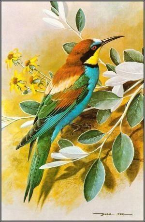 Gambar Flora Dan Fauna : gambar, flora, fauna, DheaRmdhani, PAINTINGS, Lukisan,, Gambar, Flora, Fauna,