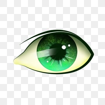 Eyeball Eyes Eyes Clipart Love Eye Eyeball Png Transparent Clipart Image And Psd File For Free Download Eyes Clipart Background Images Free Download Clipart Images