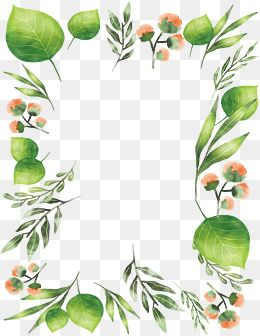 Watercolor Leaves Flowers Borders Vector Png Png And Vector