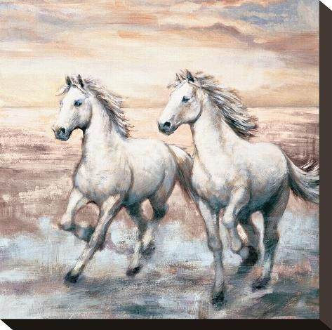 Stretched Canvas Print: Running Horses I by Ralph Steele : 12x12in