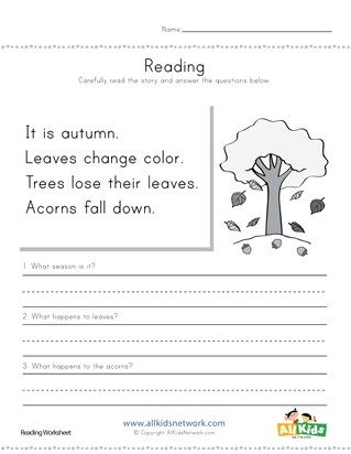 Autumn Reading Comprehension Worksheet | Teaching | Reading ...