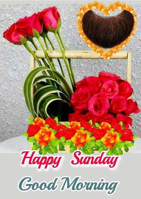 Whatsapp Good Morning Sunday