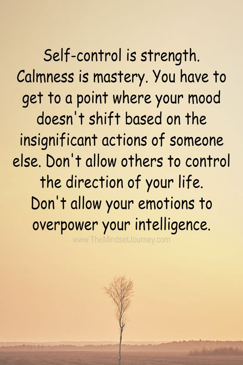 Self-control is strength. Calmness is mastery. You have to get to a point where your mood doesn't shift based on the insignificant actions of someone else. Don't allow others to control the direction of your life. Don't allow your emotions to overpower your intelligence. #tmj #themindsetjourney #self-control #strength #calmness #intelligent #inspire #encourage
