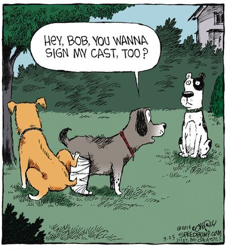 Pin By Interesting Things On Cartoon Art And Fun Headquarters In 2020 Dog Jokes Funny Cartoons Dog Comics