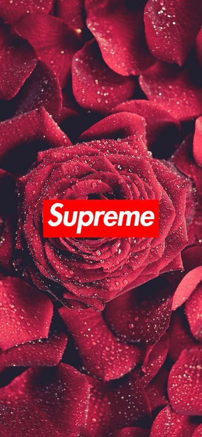 Supreme Wallpaper Rose 1125 2436 Click Here To Download Supreme Wallpaper Rose 1125 2436 Supreme Iphone Wallpaper Supreme Wallpaper Hype Wallpaper