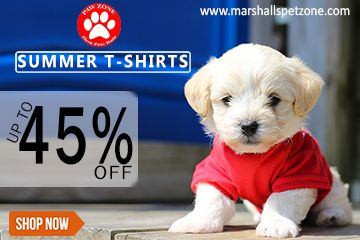 Let Your Pet Stay Cool And Stylish In This Summer Summer T Shirts Up To 45 Off Get Ready For This Summer Dog Winter Clothes Dog Summer Clothes Dog Tshirt
