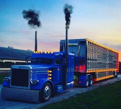 Custom Peterbilt, Peterbilt 359, Peterbilt Trucks, Customised Trucks, Custom Trucks, Show Trucks, Big Rig Trucks, Cattle Trailers, Gas Monkey Garage