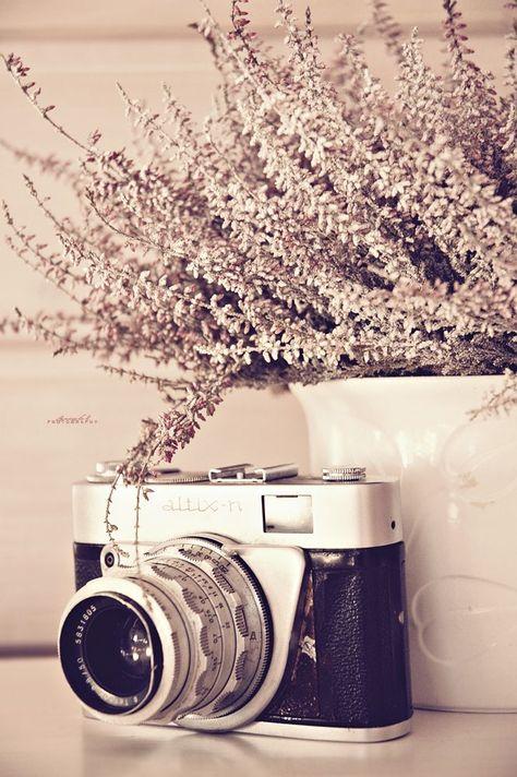 Картинки новый год и фотоаппарат