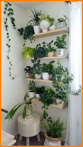 40 Beautiful Hanging Plants Ideas For Home Beautiful Hanging Plants Ideas For Home In 2020 House Plants Decor Easy House Plants Plant Decor