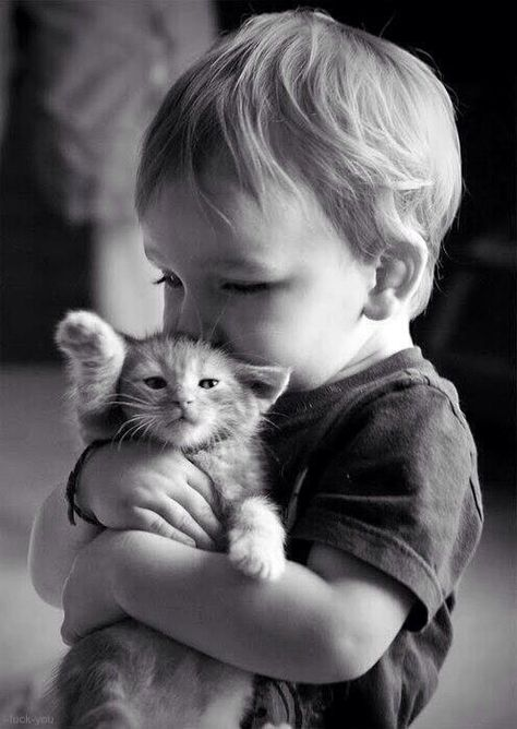 Cats with kids