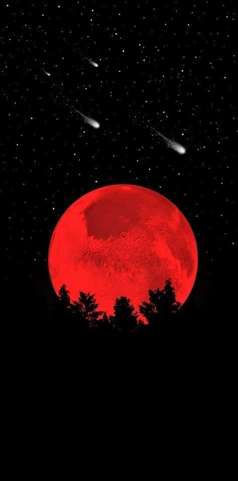 Image Shared By Ekantha Find Images And Videos About Text Red And Sky On We Heart It The App To Ge Red And Black Wallpaper Dark Red Wallpaper Red Aesthetic