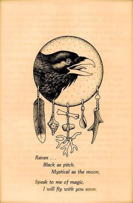 """""""Black as pitch, Mystical as the moon. Speak to me of Magic, I will fly with you soon"""" Raven, one of my totems. A page from Medicine Cards by Sams & Carson. I love my Medicine Cards. Wiccan, Magick, Tarot, Animal Spirit Guides, Under Your Spell, Raven Art, Crows Ravens, Animal Totems, Book Of Shadows"""