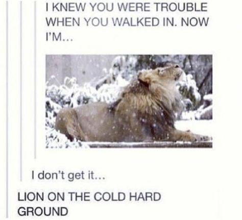 I laughed harder than I should've...