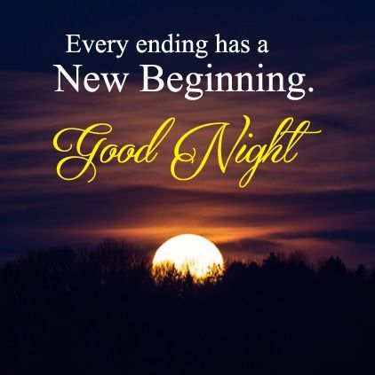 Image result for goodnight quotes