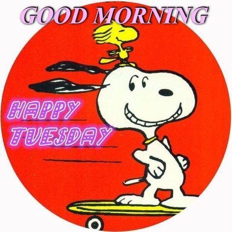 Good Morning, Happy Tuesday