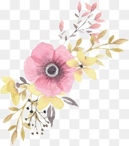 Floral Decoration Pink Leaves Watercolor Hand Painted Png
