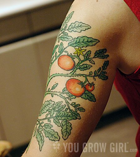 """Tomato plant tattoo.. this I might do, with """"one"""" tomato.... on the bottom of my foot....would make me think of spaghetti sauce every year during canning season..."""