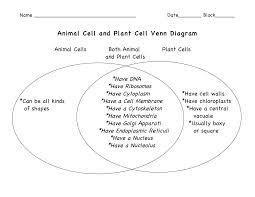plant vs animal cells venn diagram - Google Search   Plant ...
